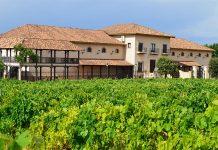 Gran premio internacional del vino MUNDUS VINI 2016 PARA Sierra Norte