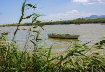 Picanterra y la Mar Sala reinan en Cullera